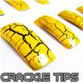 Thumb_54141-10-THUMB 70pcs false tips yel crackle pattern.jpg 3/25/2011