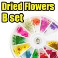 Thumb_54080-B-THUMB nailart dried flowers.jpg 11/18/2010