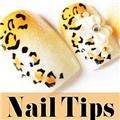 Thumb_54138-9-THUMB 12pcs pre-design nail tips.jpg 6/2/2011