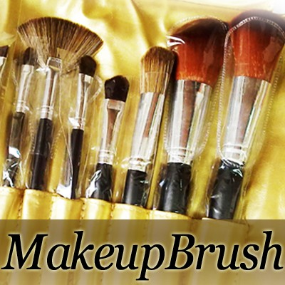 53045-THUMB 12pcs makeup brush set w gold pouch.jpg 11/24/2011