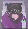 Magazine Ad for Tanqueray London Gin, 2001, Dog in Purple Sweater
