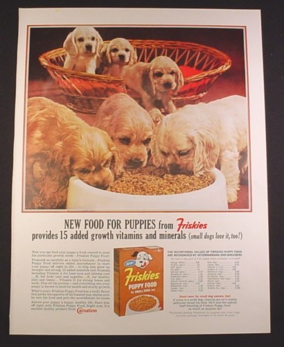 Magazine Ad for Friskies Puppy Food, 6 Puppies & Basket, 1963, 10 3/8 by 13 5/8