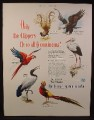 Magazine Ad for Pan Am, Pan American Airlines, Exotic Birds from 6 Continents, 1949