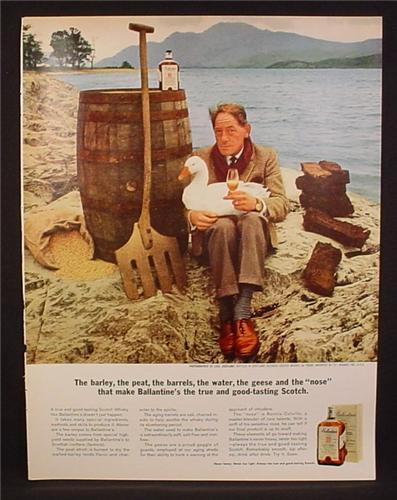 Magazine Ad for Ballantine's Scotch Whiskey, The Barrels Water Geese and Nose, 1964