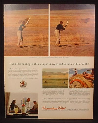 Magazine Ad for Canadian Club, Hunting a Lion with a Tranquilizer Arrow, 1962