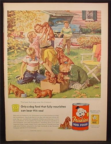 Magazine Ad For Friskies Dog Food, Harry Anderson Painting, Irish Setter & Puppies, 1955