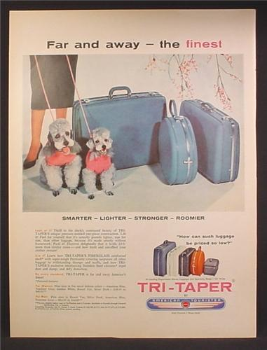 Magazine Ad For American Tourister Tri-Taper Luggage, Blue, 2 Poodles, 1957