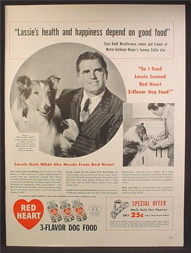 Magazine Ad For Red Heart Dog Food, Lassie From TV Show, Collie, Trainer, 1947