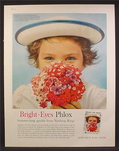 Magazine Ad For Northrup King Seeds, Little Girl with Bright-Eye Phlox Flowers, 1961