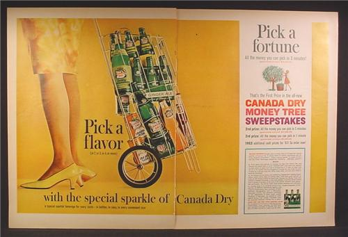Magazine Ad For Canada Dry Money Tree Sweepstakes, Cart with Bottles of Ginger Ale, 1963