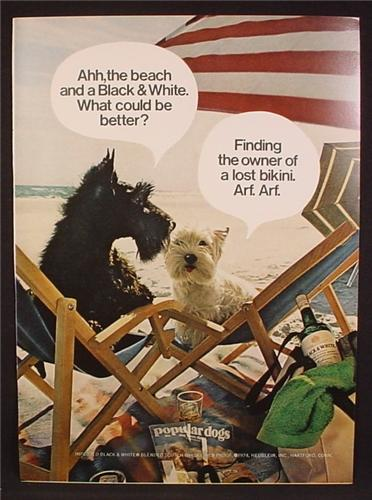 Magazine Ad For Black & White Scotch, Scottish Terriers Dogs At The Beach, 1974, 8 1/8 by 11 1/8