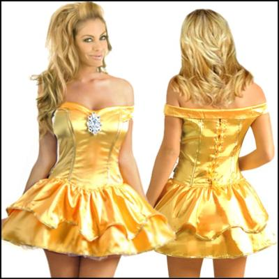 2cd570a7d37 Princess Beauty Fancy Dress Costume