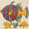 Mexican Tile fish2