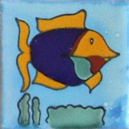 Mexican Tile Fish3