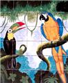 kitchen tile mural Toucan and Macaw