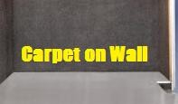 Walls:  Indoor/Outdoor Carpet on Walls $37.50 x Length of Trailer