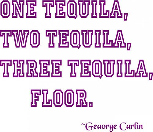 1 Tequila 2 Tequila 3 Tequila FLOOR ! Party Humor Quote Vinyl Wall Decal 15x8