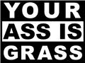 Your Ass Is Grass Picture Art Boys Bed Room Vinyl Wall Decal Sticker Design 9x9