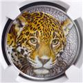 2013 CAMEROON LEOPARD COLOR NGC PF-69 MATTE OBV