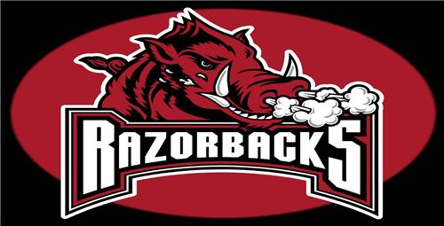 Arkansas Razorback License Plate College Football Fans Sports Teams Auto Tags Collectible