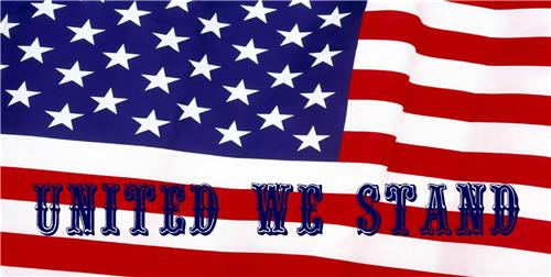 UNITED WE STAND LICENSE PLATE PATRIOTIC AMERICAN FLAG VETERANS DAY AUTO CAR TAGS