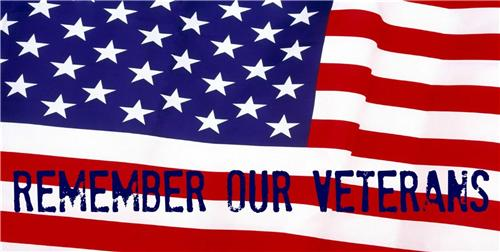 REMEMBER OUR VETERANS DAY LICENSE PLATE AMERICAN US FLAG PATRIOTIC AUTO CAR TAGS