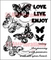 Trendy Butterflies - Shery Russ Designs