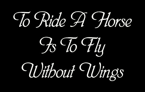 To Ride A Horse Is To Fly Without Wings